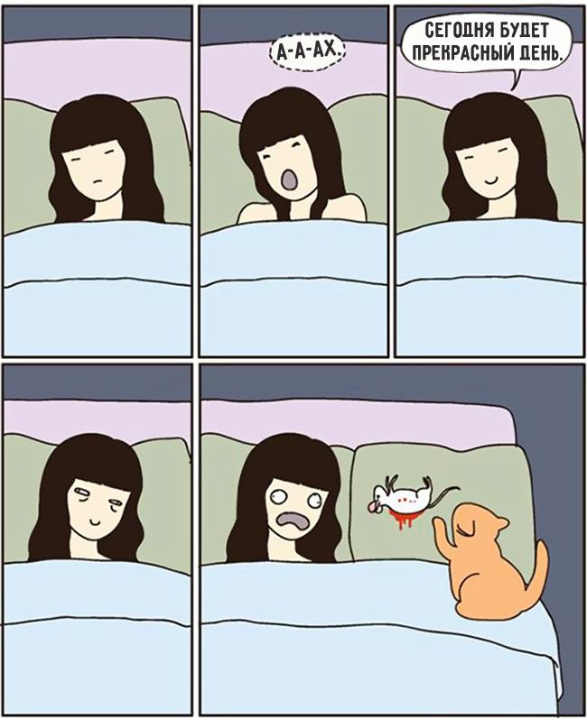 комиксы-про-отношения-кошек-и-людей-9