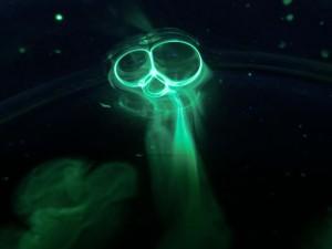 mantis alien glow