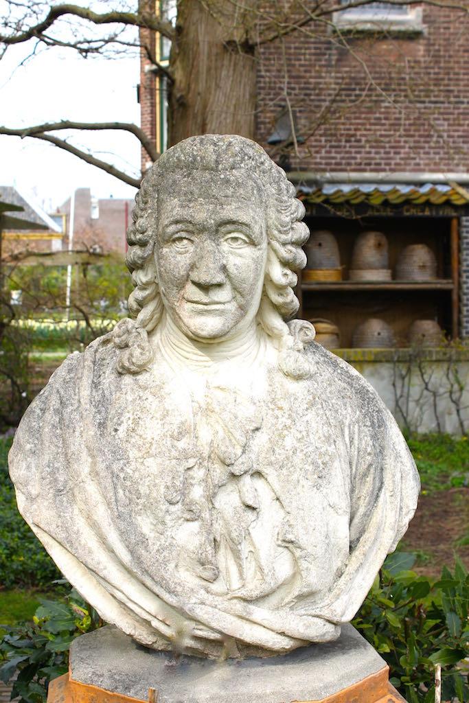 Hortus-botanicus-Leiden-garten