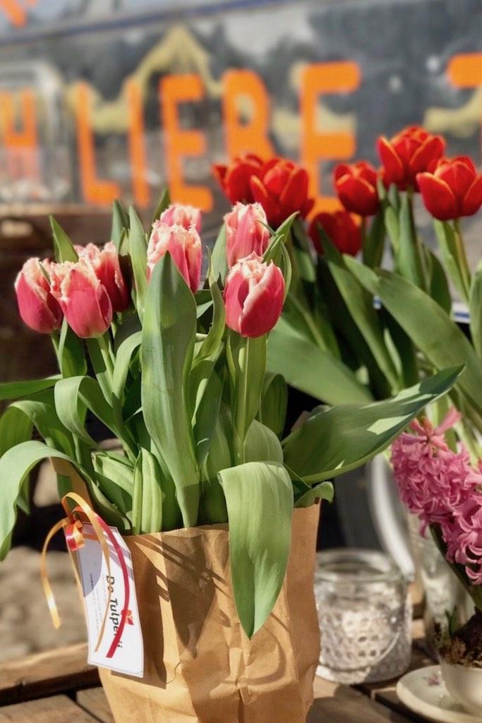 Tulpen in Kisten, Körben, Eimern und mehr.