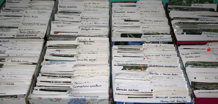 Photo files Database