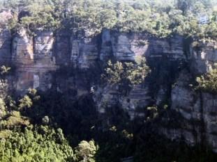 Blue Mountains Views 1986