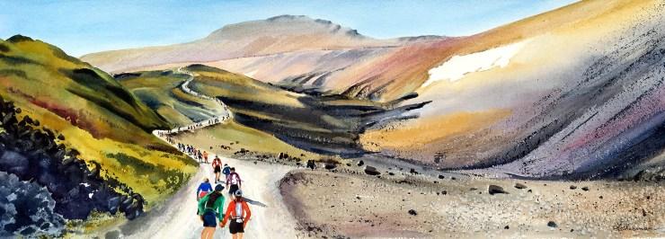 Runners on the uphill part of the Imogene Pass Run