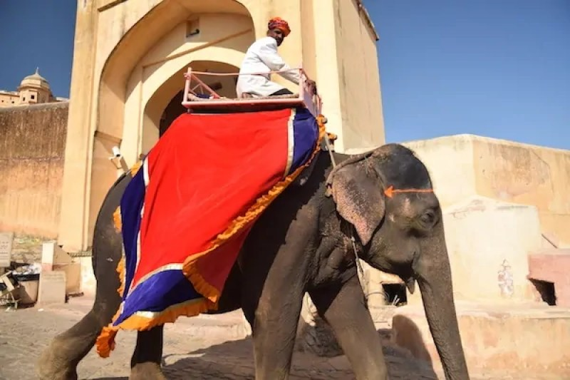 A guide to Ethical travel in Rajasthan