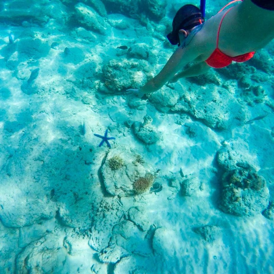 Diving-down-in-El-Nido-The-Philippines