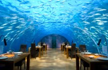 dining at ithaa-underwater-restaurant-conrad-maldives-rengali-island-resoirt-3
