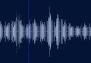 声をどのように認識しているのか?