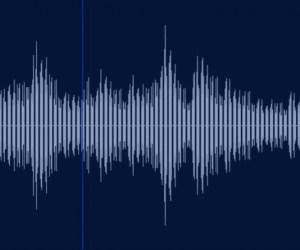 ビットレートって?音の専門用語を解説