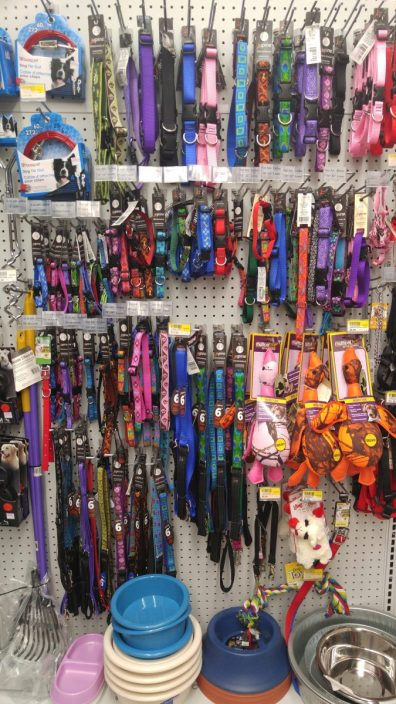Collars, leashes, tie-outs, bowls & more