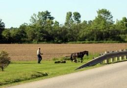 газонокосилка в одну лошадиную силу