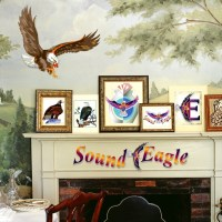 🦅 SoundEagle in Art and Decor 🖼🛋💺
