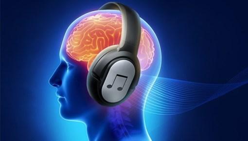 Теория. «Хорошо темперированный» ухомозг