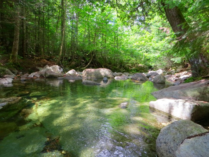 Photo of Lillian Brook on trail from Elk Lake to Dix Mountain