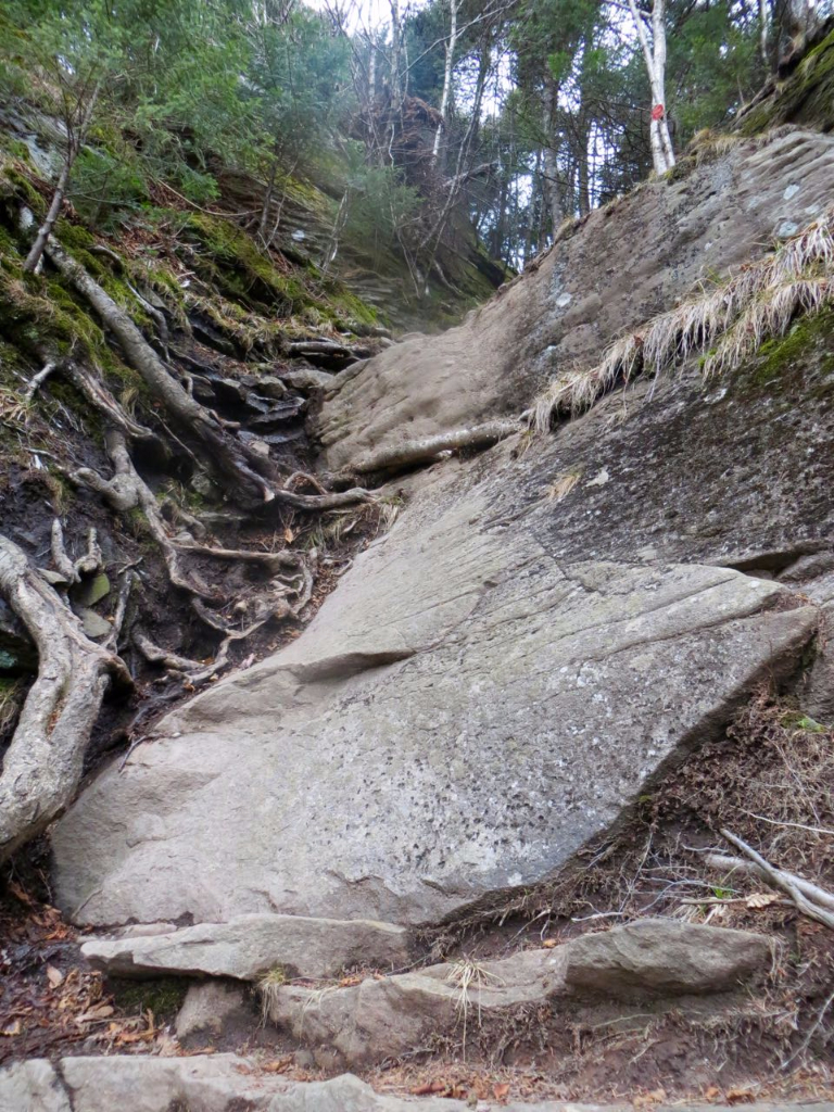 Trail up Indian Head