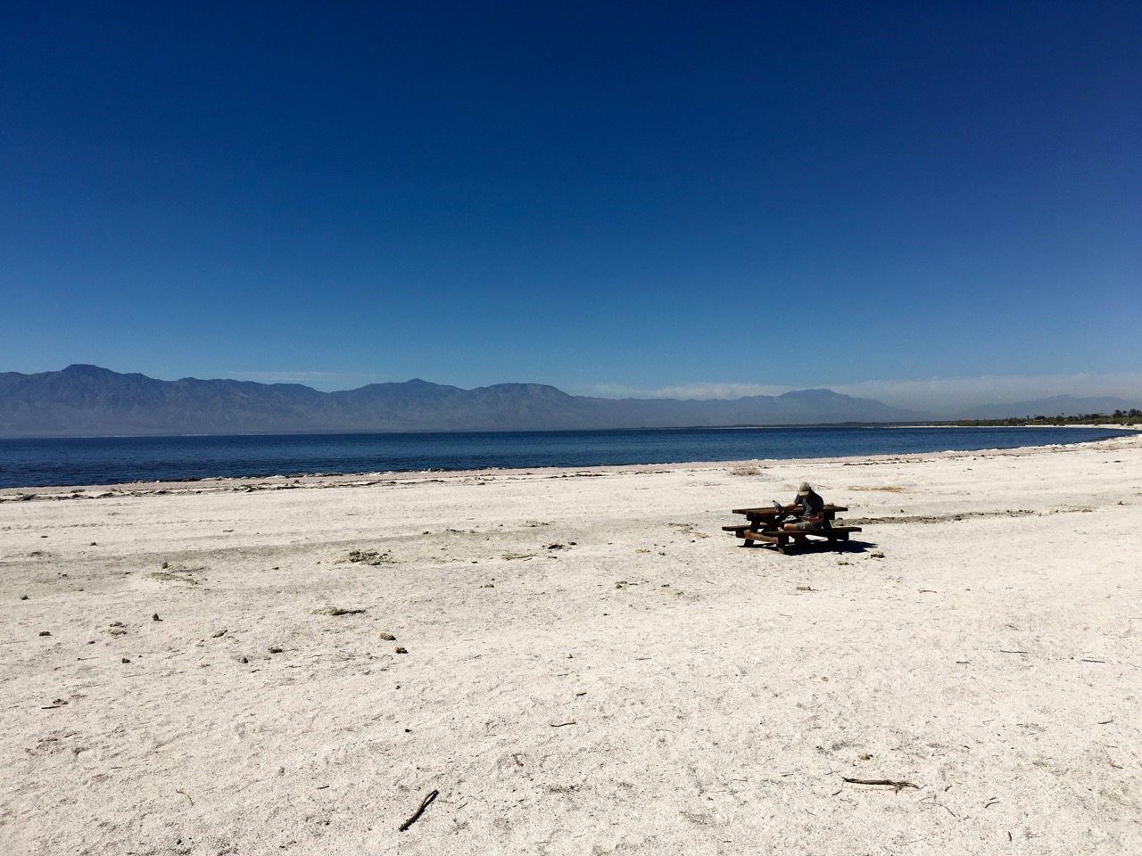 Man sitting at a remote picnic table on the Salton Sea beach