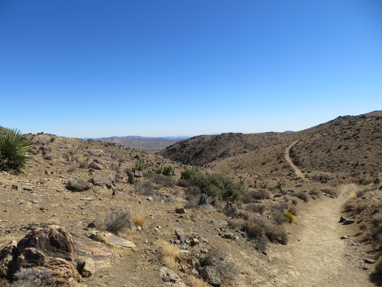 Trail into the distance of the desert