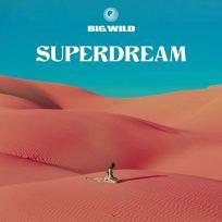 big-wild-sir-cd