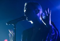 Broods by Tyler Lavoie
