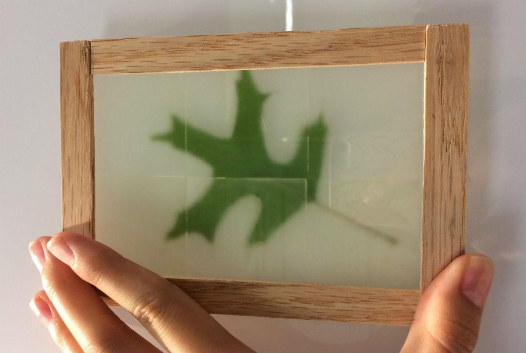 lemn transparent