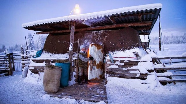 Farmer_Nikolai_Petrovich_closes_the_door_to_his_cows_heavily_insulated_stable_after_putting_the_flock_to_bed_for_the_night._Welcome_to_The_Coldest_Place_Inhabited_By_Humans_on_Earth