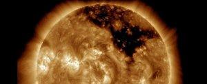 gaura solara
