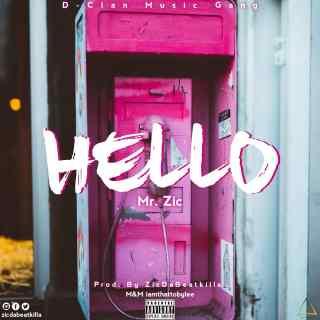Mr. Zic - Hello