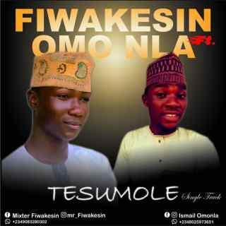 Mr Fiwakesin ft. Omo Nla - Tesumole