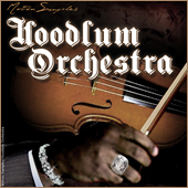 motion samples hoodlum orchestra review