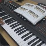 Using Chord Mode on the ASM Hydrasynth