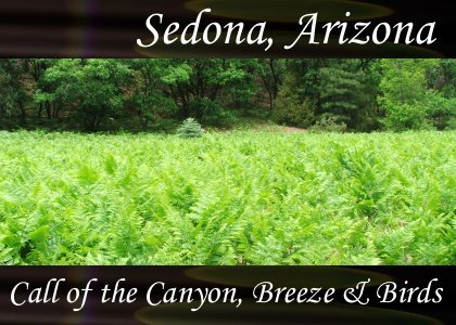SoundScenes - Atmo-Arizona - Sedona, Call of the Canyon, Breeze and Birds