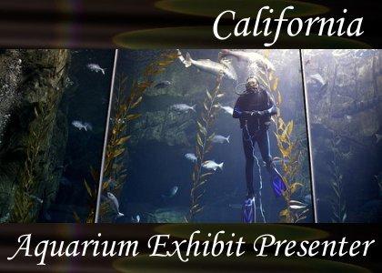 SoundScenes - Atmo-California - Aquarium Exhibit Presenter