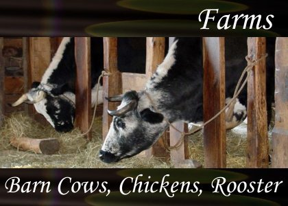 SoundScenes - Atmo-Farm - Barn Cows Chickens Rooster