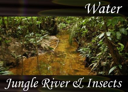 SoundScenes - Atmo-Water - Jungle River and Insects