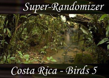 Costa Rica – Birds Set #5 (40 Sounds)