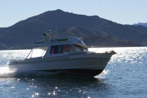 MV Tory in Queen Charlotte Sounds, Picton, New Zealand
