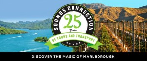 Sounds Connection celebrates 25 years