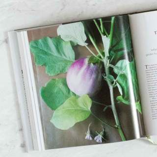 Favorite Vegetarian Cookbooks