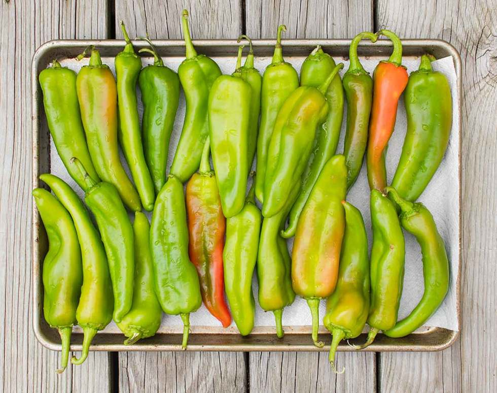 A tray of Hatch chiles