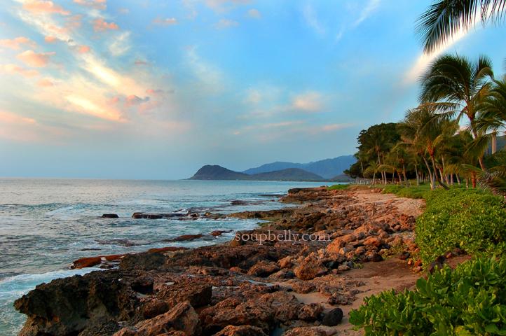 Hawaii 031small