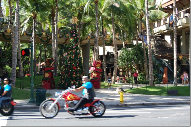 Hawaii 010