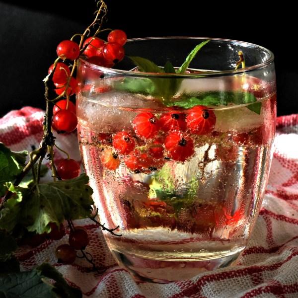 Glas mit Infused Water Beeren