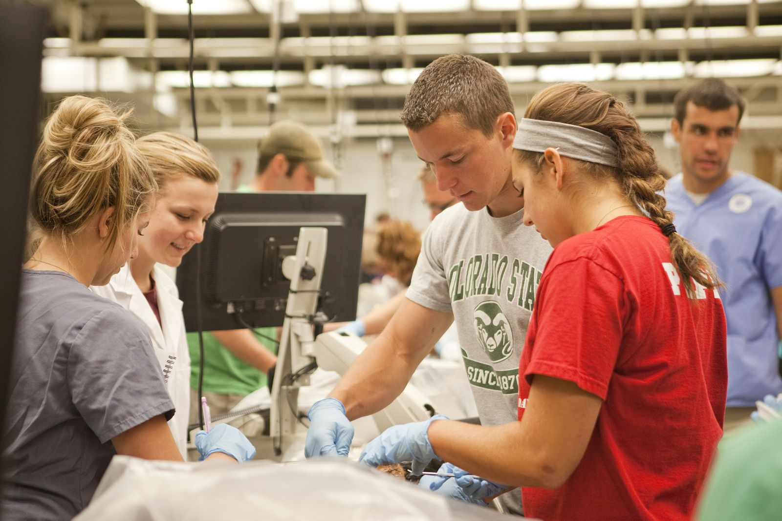 A Look Inside Csu S World Class Anatomy Lab Engages