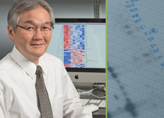"""""""In science, you must follow the investigations and build on your observations, even when they seem unusual or meet resistance,"""" Professor Yokoyama says. (Joe Angeles)"""