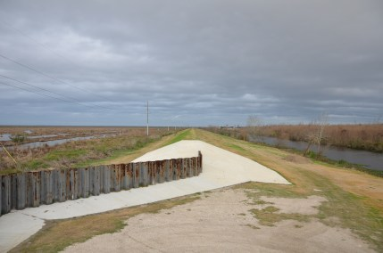 An earthen levee south of New Orleans. Land in the protected zone, at right, drops approximately six feet below the level of the saline marsh at left. (Photo: Derek Hoeferlin)