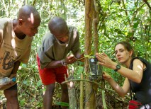 Crickette Sanz (right) and Congolese researchers help secure a remote camera that they will use to study primates in their natural habitats without influencing their behaviors. (Courtesy Ian Nichols)