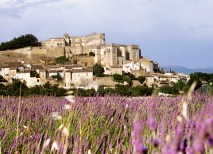 """""""Provence and the Rhône River,"""" May 13–21 (Courtesy Image)"""