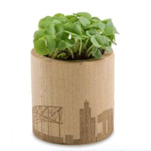 Wooden Round Planter with Laser Engraving