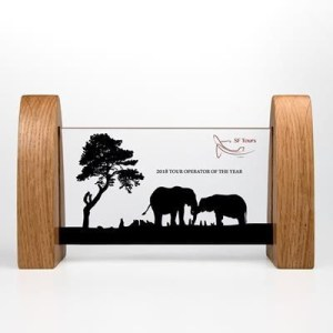 Promotional Items - Acrylic Window Award Custom Made
