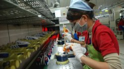 Footwear Growth Leader Cambodia's Exports, Economy