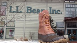 L.L. Bean Under Fire Chairwoman's Donations